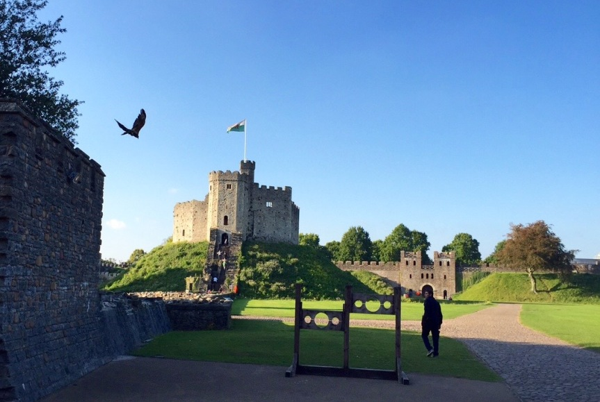 On the grounds of Cardiff Castle, a falconer trains his bird. The castle keep looms in the background.