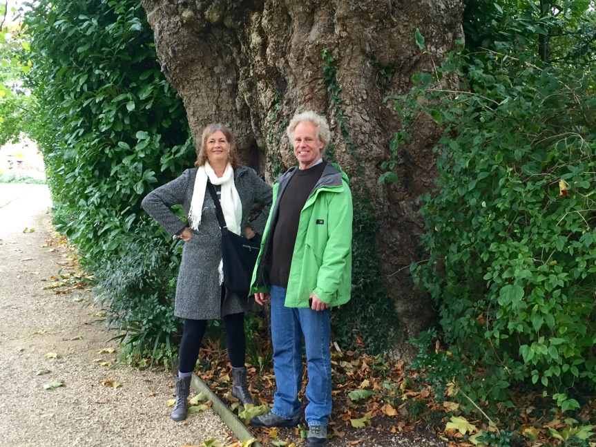 Kathy and Eddie stand in front of a massive tree trunk in the Worcester College gardens.