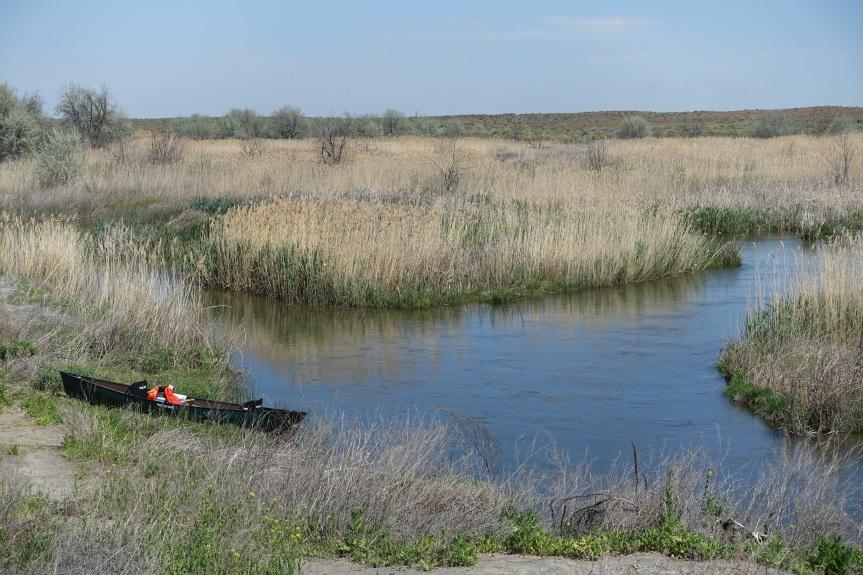 Canoe on bank