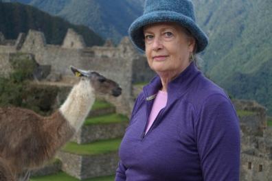 KT with llama
